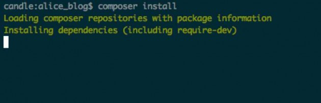 composer_install_wordpress