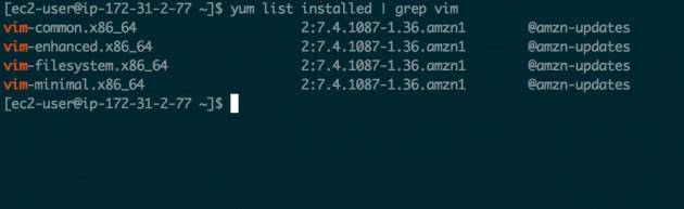 yum_installed_vim_package